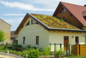 whats-a-green-roof